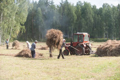 Men haymaking Stock Photo