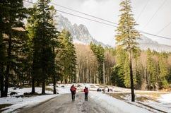 Men hiking Royalty Free Stock Image