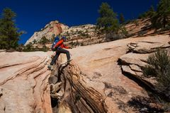Men is hiking in Zion National Par, Utah, USA Royalty Free Stock Images