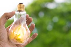 Men hold light bulbs with sun in the daytime, with tree bokeh backdrops using wallpaper or background for idea work for business w. Ork Stock Images
