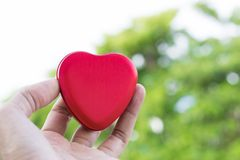 Men holding heart shaped box red color  on  tree blury background.  using wallpaper or background for care photo Stock Photo