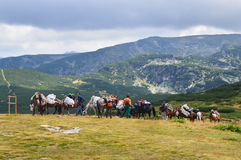 Men with horse load in mountain Stock Photo