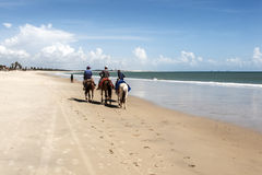 Men horse riding on the beach Royalty Free Stock Photography