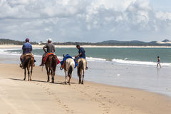 Men horse riding on the beach Royalty Free Stock Image