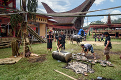 Men impose buffalo meat from cauldron at the funeral ceremony in Tana Toraja Royalty Free Stock Images
