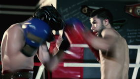 Men inflict punches in the boxing gloves. stock footage
