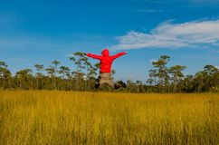 Men jumping in summer field Stock Photography
