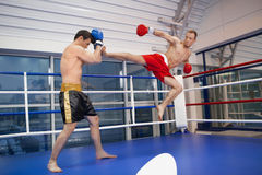 Men kickboxing. Royalty Free Stock Photography
