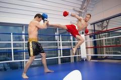 Men kickboxing. Royalty Free Stock Photography