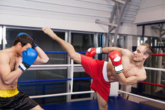 Men kickboxing. Two confident men kickboxing on the ring Royalty Free Stock Photography