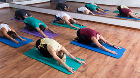 Men and ladies learning yoga Royalty Free Stock Image