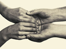 Men& x27; las manos de s sostienen las palmas femeninas Foto de archivo libre de regalías