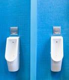 Men lavatory in modern public restroom Stock Image