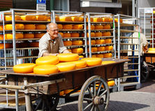 Men loading cheese in a truck Royalty Free Stock Photography