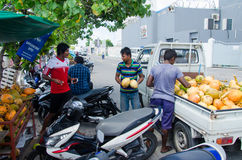 Men loading coconuts from truck Royalty Free Stock Images