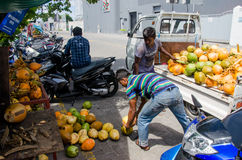 Men loading coconuts from truck Royalty Free Stock Photography
