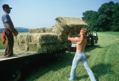 Men loading hay bales on truck Royalty Free Stock Image