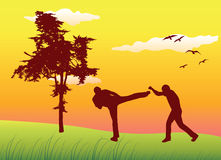 Men making kickboxing exercises on summer field Stock Photo