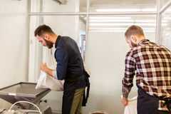 Men with malt bags and mill at craft beer brewery. Manufacture, business and people concept - men with bags pouring malt to mill at craft brewery or beer plant stock photo