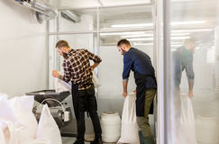 Men with malt bags and mill at craft beer brewery. Manufacture, business and people concept - men with bags weighing and pouring malt to mill at craft brewery or Stock Image