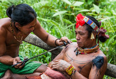 Men Mentawai tribe make tattoo. MENTAWAI PEOPLE, WEST SUMATRA, SIBERUT ISLAND, INDONESIA – 03 OKTOBER 2011: Men Mentawai tribe make tattoo stock photo
