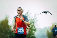 Men middle-aged runner running after him flying pigeon Royalty Free Stock Photos