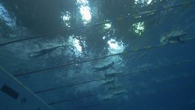 Men in mono flippers underwater in swimming pool during training free diving. Learning diving in flippers on deep pool. Free diver swimming in diving pool stock video footage