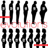Men obesity evolution and pregnancy stages Stock Images