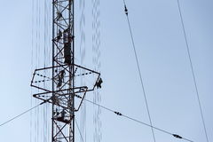 Men painting the highest Czech construction radio transmitter tower Liblice Stock Image