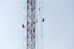 Men painting the highest Czech construction radio transmitter tower Liblice Stock Photos