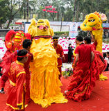 Men performs the dance of Lion in vietnames Royalty Free Stock Images