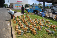 Men and pineapples at roadside near town market Royalty Free Stock Photo