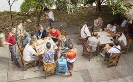 Men play cards in a park. Stock Images