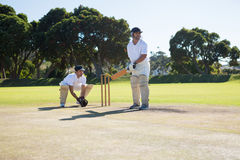 Men playing cricket at pitch against clear sky. On sunny day stock photo