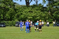 Men playing typical scottish team game shinty with sticks and ball