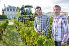 Men posing in vineyard Royalty Free Stock Image