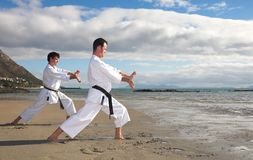 Men practicing Karate Royalty Free Stock Image