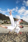 Men practicing Karate Royalty Free Stock Images