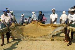 Men pulling dragnets ashore Royalty Free Stock Images