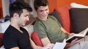 Men reading textbooks on sofa. Two casual young men posing on couch concentrated on reading books at home stock footage