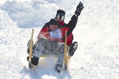 Men ride traditional horn-sledge in Grindelwald, Switzerland. Royalty Free Stock Photos