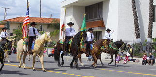 Men Riding Horses royalty free stock image