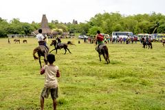 Fighting with spears from palm leaves, Pasola Festival, Kodi, Sumba Island, Nusa Tenggara Royalty Free Stock Photos