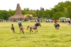 Pasola Festival, Kodi, Sumba Island, Nusa Tenggara Royalty Free Stock Photos