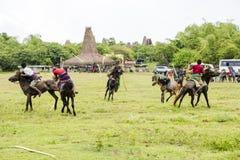 Pasola Festival, Kodi, Sumba Island, Nusa Tenggara royalty free stock image