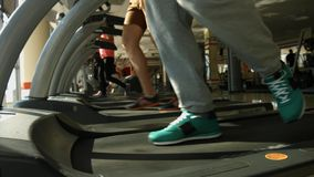 Men running on a treadmill in gym. stock video footage