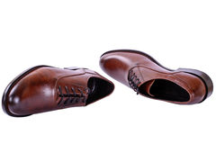 Men's autumn shoes with laces. Brown shoes for men business style on white Royalty Free Stock Image