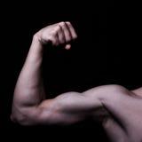 Men's biceps. Men's biceps on a black background Royalty Free Stock Image