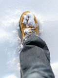 Men's boot. Men's boot in the snow in winter Stock Photography