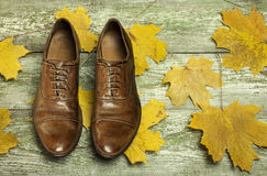 Men`s classic brown leather shoes on the wood floor. Royalty Free Stock Image